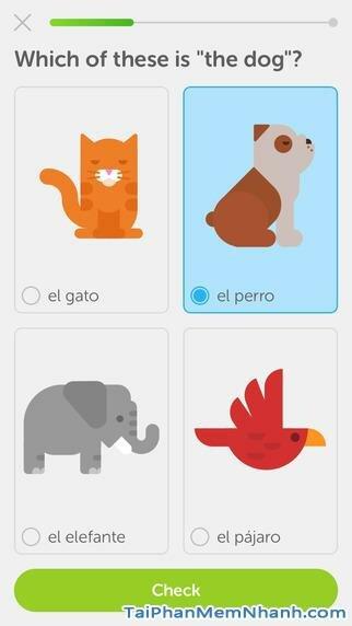 Hình 3 - Tải Duolingo - Ứng dụng học ngôn ngữ trên iPad, iPhone