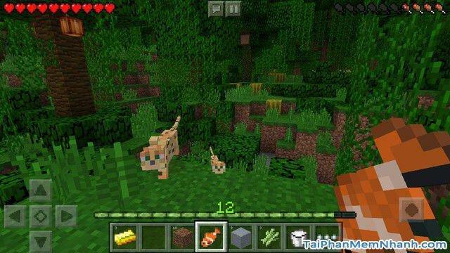 Hình 2 - Tải game xây dựng thế giới Minecraft cho iPhone, iPad