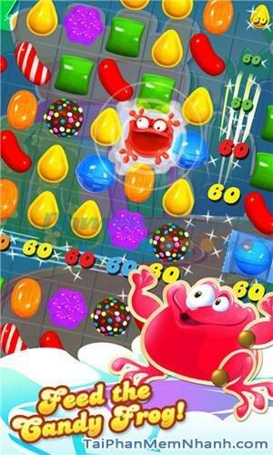 Hình 1 Tải trò chơi Candy Crush Saga cho Windows Phone