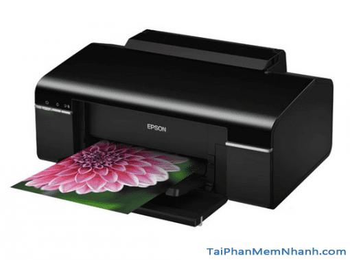 Printer Epson T50 - Tải và cài đặt Driver máy in Epson T50 + Hình 2