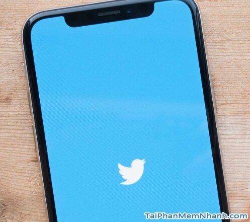 logo twitter trên iPhone X