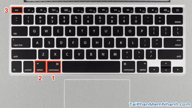 Những phím tắt thông dụng cần biết trên Laptop MacBook cho người mới + Hình 17