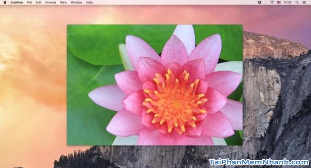 TOP 15 phần mềm cần thiết cho người mới sử dụng Macbook - PHẦN I + Hình 13