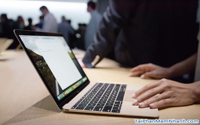 Hướng dẫn khắc phục lỗi Laptop Macbook bị đơ chuột + Hình 2