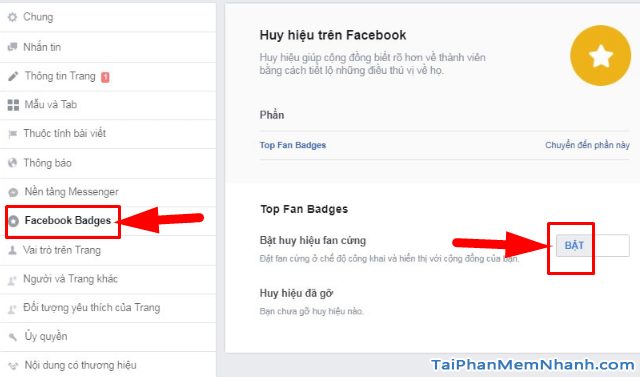 Hướng dẫn cách bật huy hiệu Fan Cứng cho FanPage Facebook + Hình 11