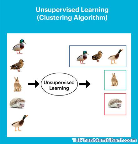 Machine Learning là gì? Machine Learning hoạt động như thế nào? + Hình 6