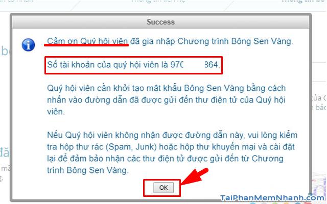 Đăng ký tài khoản Bông Sen Vàng trên web Vietnam Airlines + Hình 11