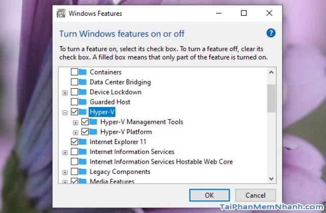 Mẹo trải nghiệm Windows 10X mà không cần cài đặt trên máy tính + Hình 9